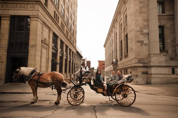 montrealhorsecarriage_web.jpg