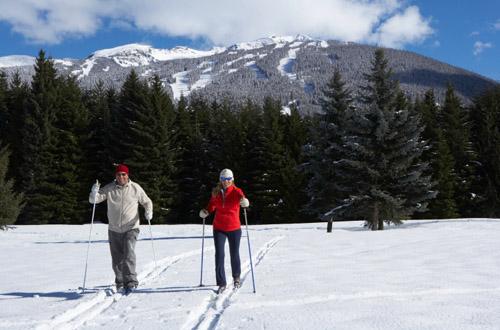 whistler-skiing.jpg